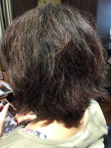 年齢に伴ってパサついてくる髪質。