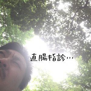 IMG_7530